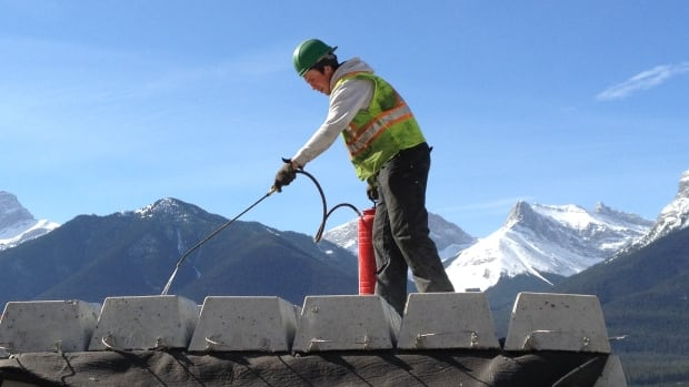 Town of Canmore Mountain Creek Hazard Mitigation ...