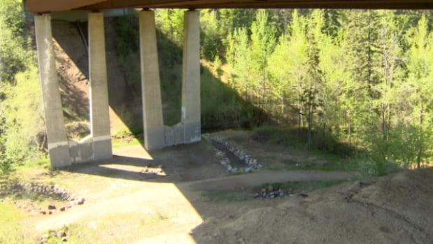 The attack took place under the Victoria Trail bridge early Tuesday morning.