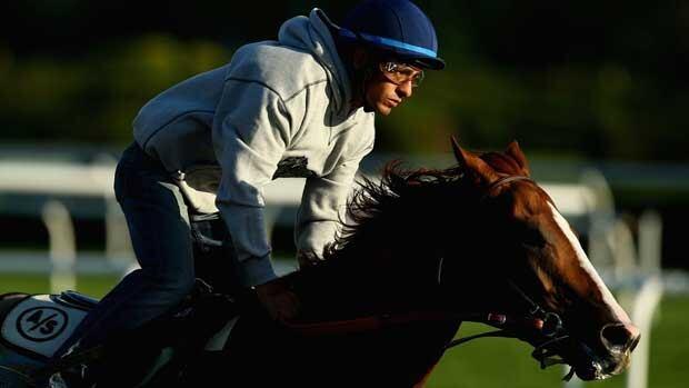 Jockey Victor Espinoza takes California Chrome for a ride Saturday morning at Belmont.