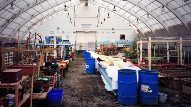 A view of Inuvik's community greenhouse.