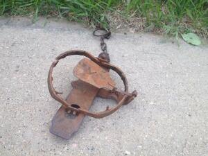 leghold trap