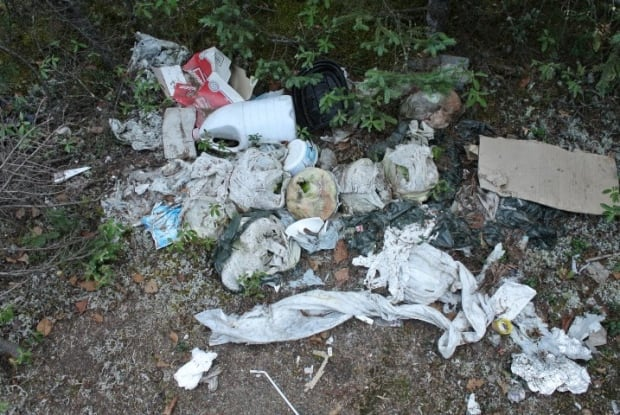 Garbage on the Happy Valley-Goose Bay bike path