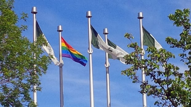 The flagpole is one of two community flagpoles designated by the city in May.