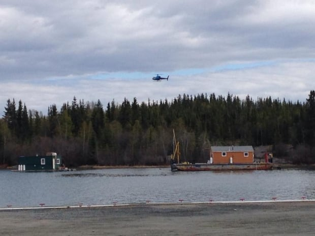 Joliffe Island helicopter searches for bear