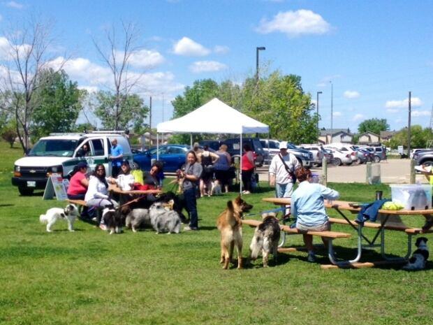 Winnipeg dog fest