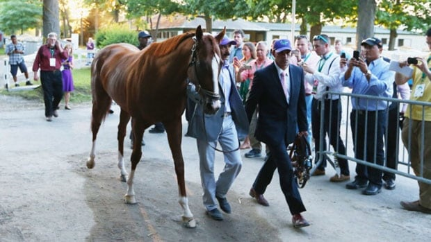 California Chrome had a rough trip in the 1 ½-mile Belmont on Saturday, failing to complete the first Triple Crown title in 36 years.