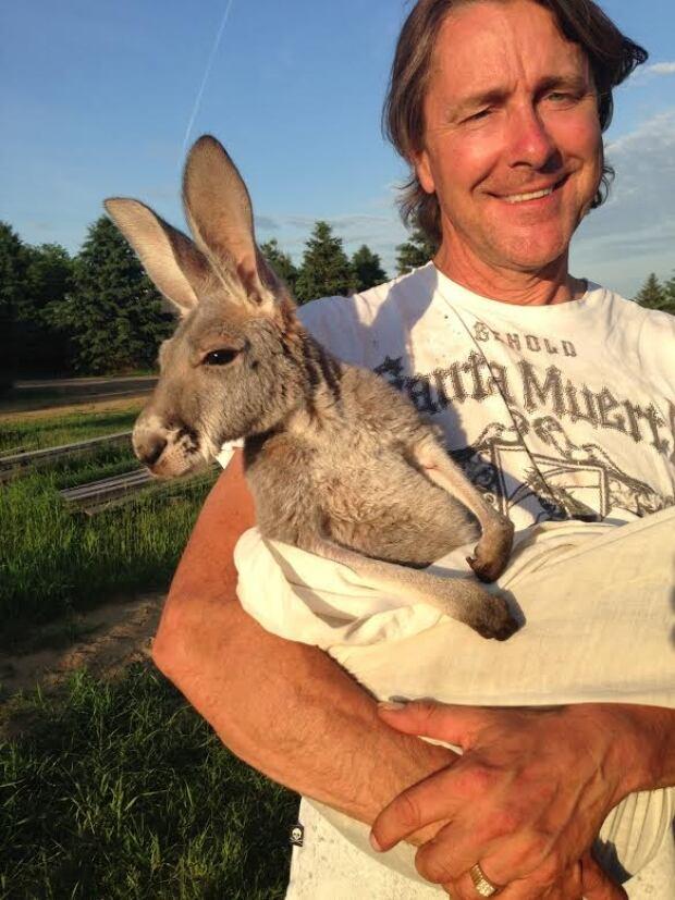 luc lefebvre mirka kangaroo