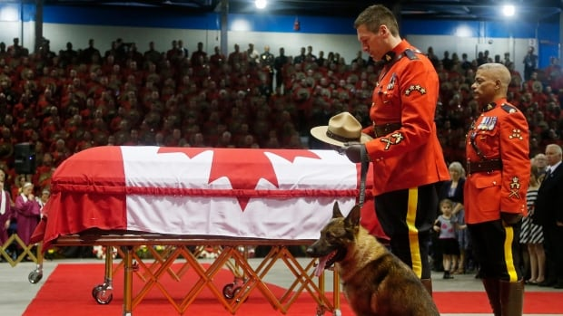 An RCMP officer with Danny pauses in front of David Ross's casket during the regimental funeral.