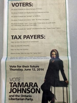 tamara johnson political ad