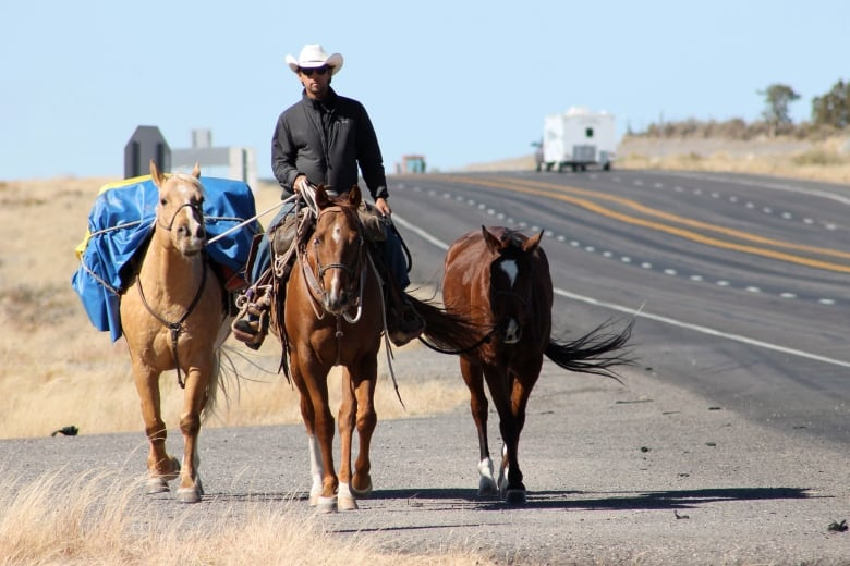 Canadian Cowboy Rides Horse To Brazil In Time For World Cup Cbc News