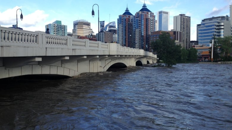 Calgary managed 2013 flood well, says new report | CBC News