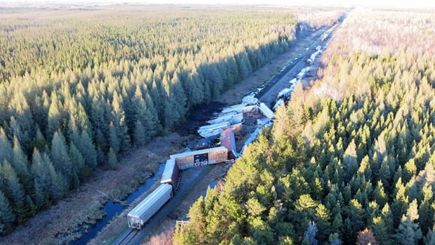Aerial view of CN train derailment near Fort Frances, Ont. on May 23. The freight train saw 35 of its 168 cars derailed.