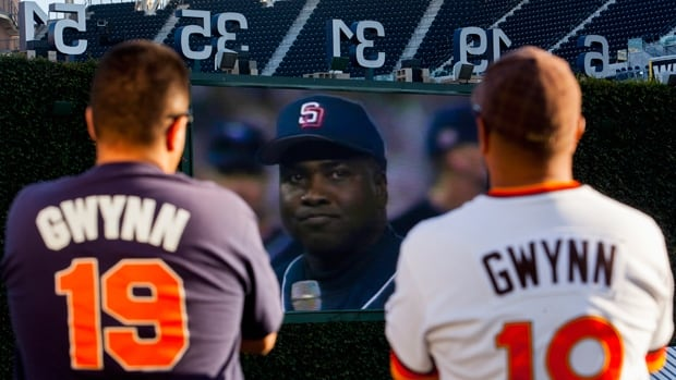Fans of the late Tony Gwynn watch highlights of the baseball Hall of Famer at a makeshift memorial at Petco Park on Tuesday.