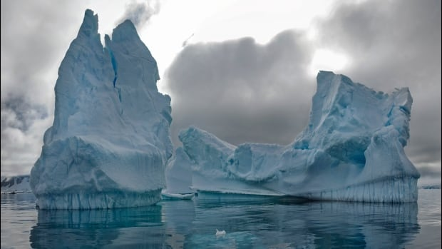 A dramatic grounded iceberg is seen from Lagoon Island in Ryder Bay Antarctica. As a result of climate change, there are now more icebergs in the region and they float around more freely, as there is less sea ice to hold them in place.