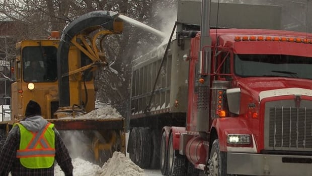 Montreal's auditor general found that out of 163 snow-clearing companies, only 9 were awarded more than half of all borough contracts.