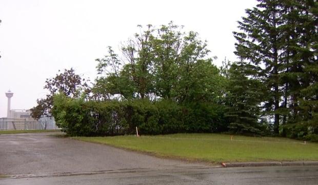Mount Royal greenspace