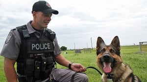 Police dog scout