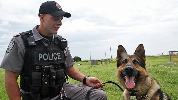 How To Get A Job Training Police Dogs Canada