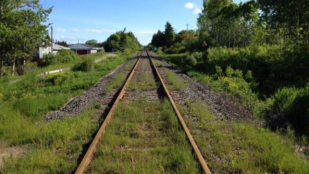 CBCNS Railway is an American-owned company that charged adjacent landowners thousands of dollars in access fees.