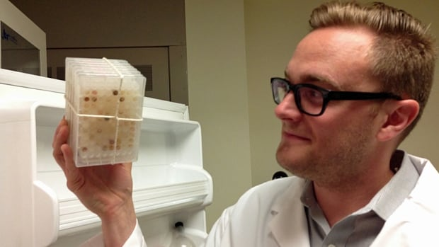 Andrew King, a graduate student and first author on the Nature paper, looks at what he calls the 'brown goo' produced by bacteria. One of the compounds in the goo appears to fight antibiotic-resistant superbugs.