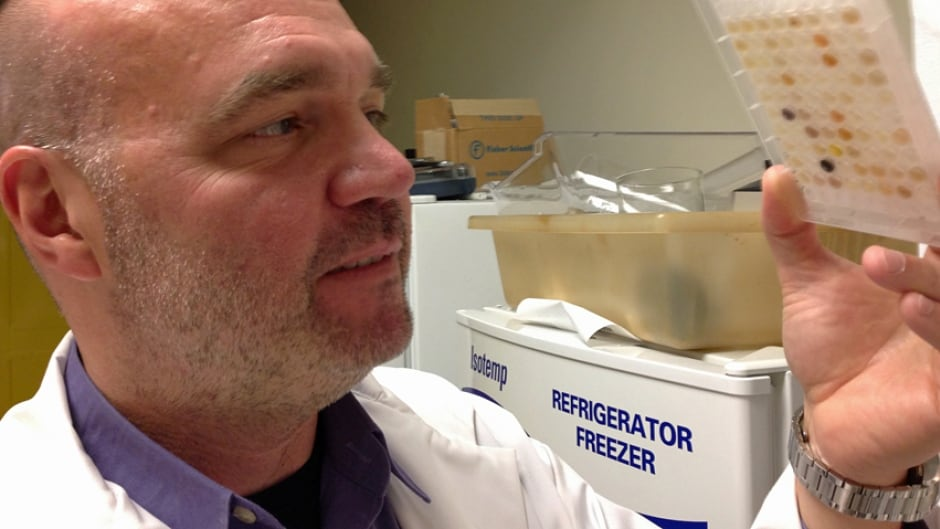 McMaster University scientist Gerry Wright is among the Canadians studying the MCR-1 antibiotic resistant gene.