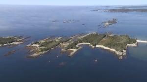 Coastal Conservation Eastern Shore