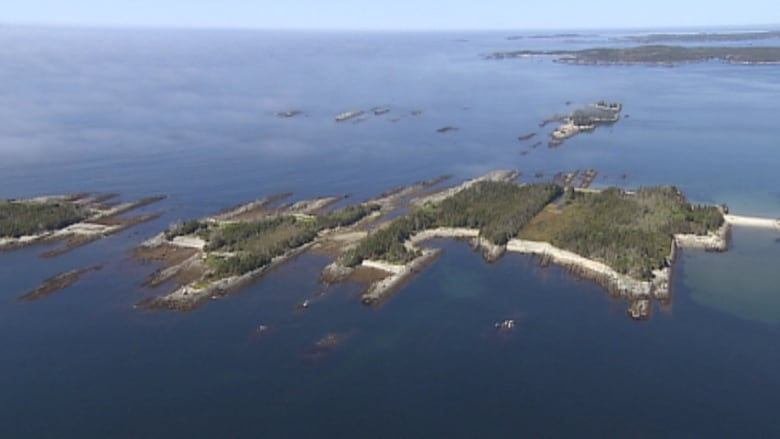 Eastern Shore island conservation proposed by Nature Trust | CBC News