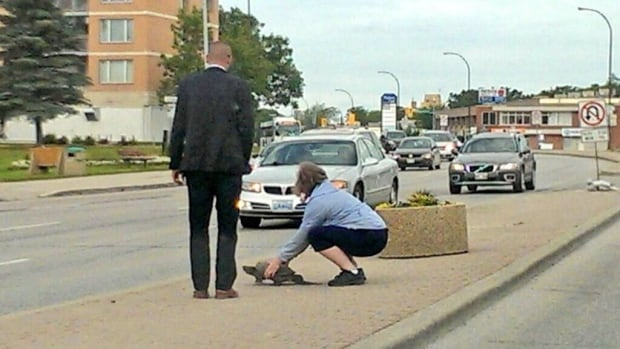Kevin Chief says he and a woman, right, come to the aid of a turtle that was trying to cross Portage Avenue on Thursday morning.