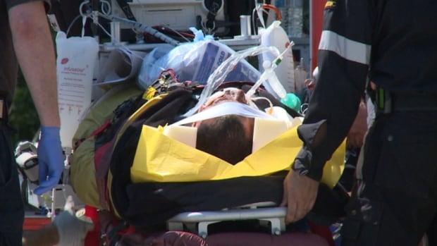 OPP motorbike officer hit goose