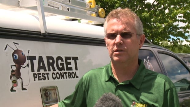 Stephen Taylor, with Target Pest Control, says this year is a bad one for carpenter ants.
