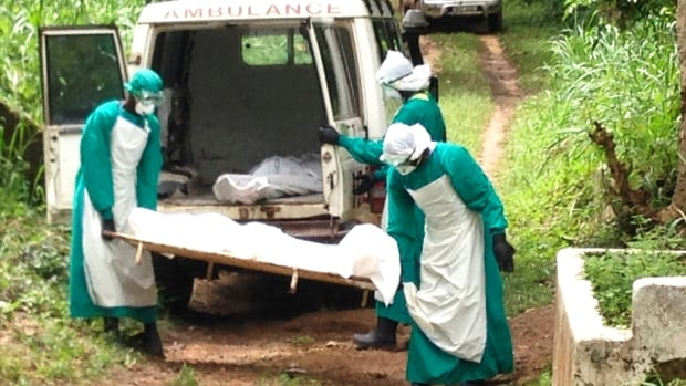 Nothing left to lose: Health workers carry the body of an Ebola virus victim in Kenema, Sierra Leone. The Ebola outbreak is spreading so quickly that pressure is growing for experimental drugs to be used to help victims.