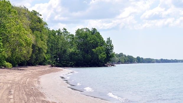 Holiday Beach has the highest E. Coli count in Windsor-Essex.