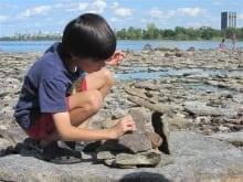 Bate Island, Ottawa
