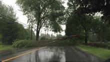 woodstock road