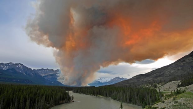 The wildfire is located 50 kilometres west of Nordegg near the Banff National Park border. Crews anticipate the fire will not spread past predetermined boundaries.