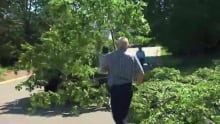 N.B. cleans up after Arthur