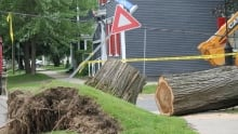 Sign uprooted