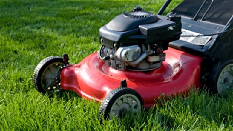Old lawnmowers may qualify for cash — even without a receipt