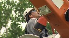 NB Power line worker