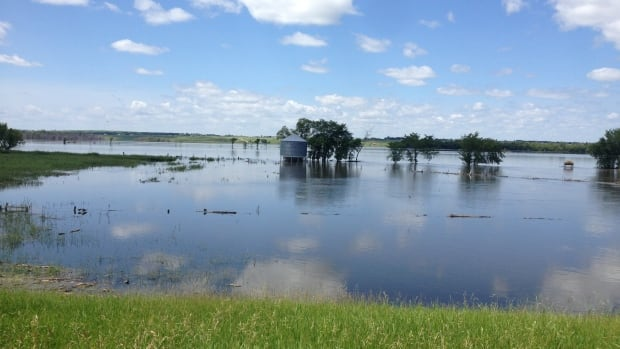 American farmers and municipalities say Manitoba's Border Road acts as a dike and causes U.S. farmland to flood.