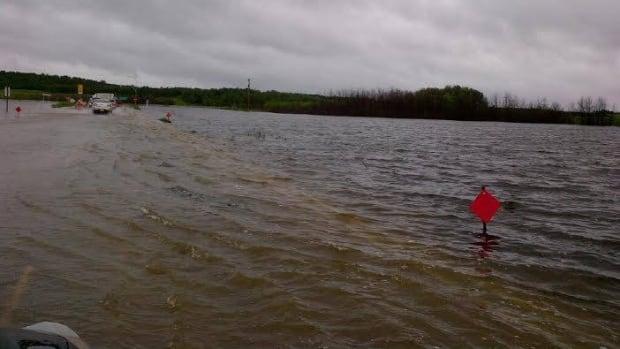 Fields off Highway 2 near Bruno were under water earlier this month.