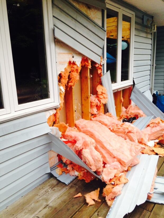 bear attack on house, parry sound
