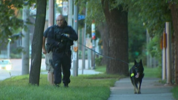 A Toronto police officer and dog search the area after a nighttime break-in near Royal York Road and Bloor Street West.