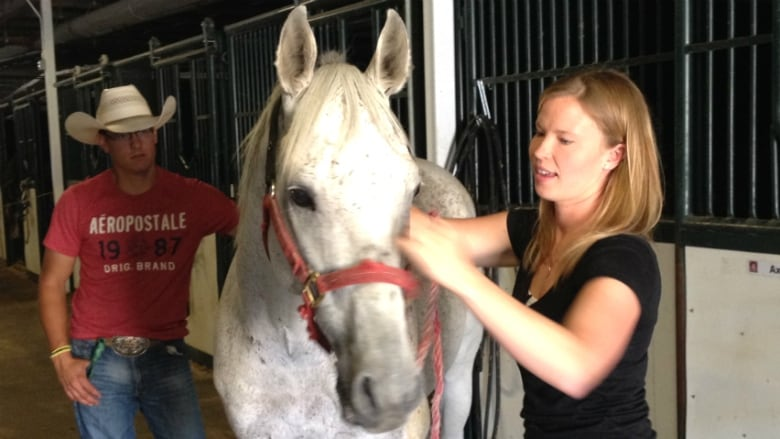 Calgary Stampede Horses Get Help In The Form Of Yoga