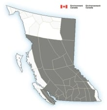 B.C. July 12, 2014 - Special weather statement map
