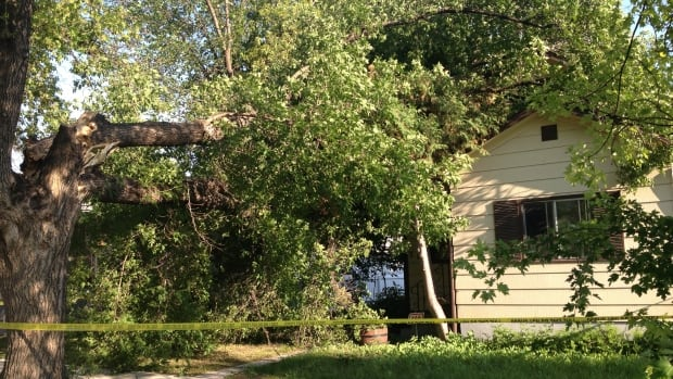 High winds from a brief thunderstorm sent a tree onto this Transcona home on Saturday.