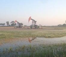 Wet oil field
