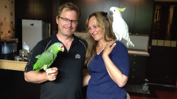 Anna and Steve Lawrence of Birdline Parrot Rescue lost 27 birds and most of their belongings in a fire in March. They are currently fighting with their insurance company to recover the costs.