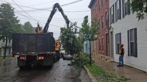 Saint John post-Arthur tree cleanup began on Tuesday