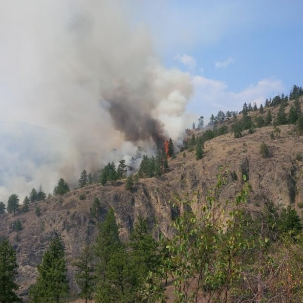 Brush fire on Mount Boucherie, West Kelowna, B.C.